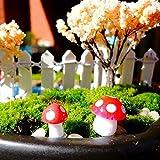 Hogar Jardin Best Deals - BESTIM INCUK® Miniatura Hadas Jardín Seta Hogar Decoración Decoración