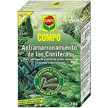 Amazon.es: COMPO