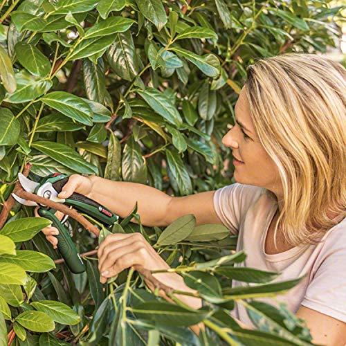 Bosch elektrische Gartenschere EasyPrune (integrierter 3,6 Volt Akku, 450 Schnitte/Akkuladung, in Blisterpackung)