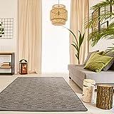 Schlingen Teppich Torro - Farbe wählbar | Geprüfte Qualität: die Teppiche sind schadstoffgeprüft robust und pflegeleicht | u.A. für Wohnzimmer Schlafzimmer Flure und auch Fußbodenheizung geeignet, Farbe:Grau, Größe:200 x 250 cm
