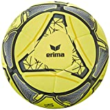 erima Ball Hybrid Indoor