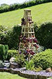zest4leisure Snowdon Obelisk–Holz