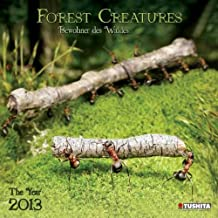 Forest Creatures 2013 What a Wonderful World