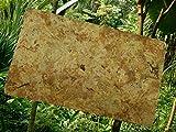 Sphagnum Moos 100 g
