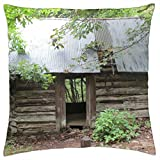 old shack in the woods along the buffalo river - Throw Pillow Cover Case (18 x 18)