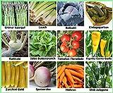 Traumgarten2014 Gemüse Set 1: Mix Tomate Paprika Chili Lauch Einlegegurken Kohlrabi Zucchini Speiserübe Salat Samen Saatgut