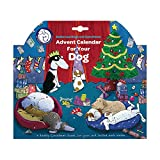 Battersea Dogs & Cats Home Advent Calendar for Dogs