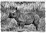 Wildnis Südafrika (Tischkalender 2019 DIN A5 quer): Südafrikas Tierwelt in hochwertigen schwarz-weiß Aufnahmen (Monatskalender, 14 Seiten ) (CALVENDO Tiere)