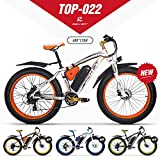 eBike_RICHBIT RLH-022, E-Bike, 1000 W, 48 V, 17 AH (Naranja)