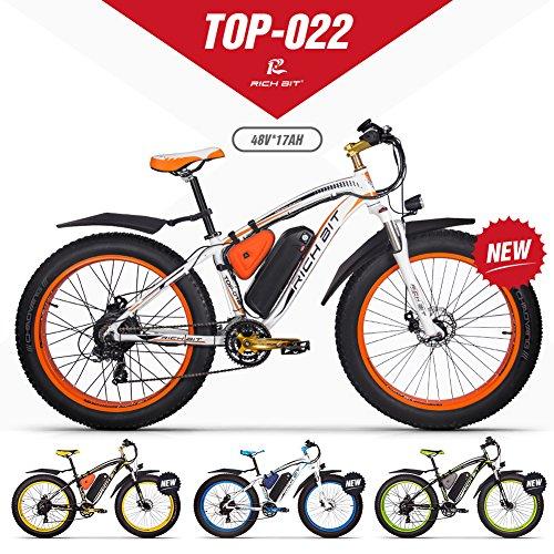 RICHBIT eBike RLH-022, E-Bike, 1000 W, 48 V, 17 AH,Orange