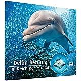 Delfin-Rettung im Reich der Mantas
