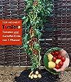 BALDUR-Garten TomTato® & Tomatensäule,1 Set von Baldur-Garten auf Du und dein Garten
