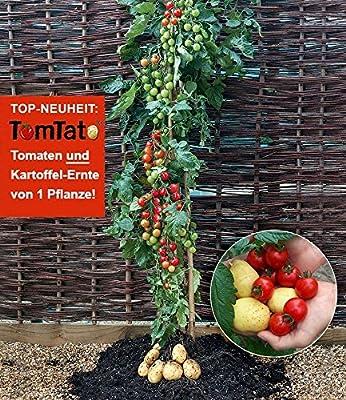 BALDUR-Garten TomTato® & PotatoPot®,1 Set von Baldur-Garten auf Du und dein Garten