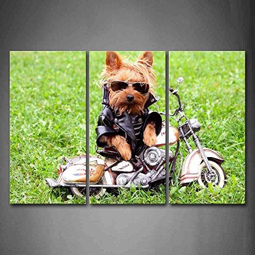 Yellow Dog Glas und Stoff tragen witn Motor auf Gras Art Wand Bilder Kunstdruck auf Leinwand Tier die Bild für Home Moderne Dekoration