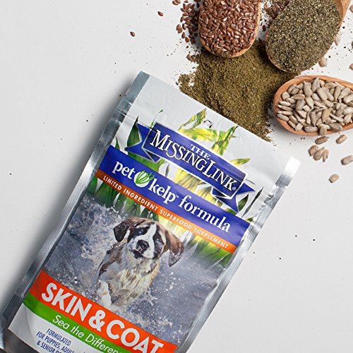 Pet Kelp Skin and Coat Formula Powder Antioxidant Supplement Dogs Cats 8oz - 6
