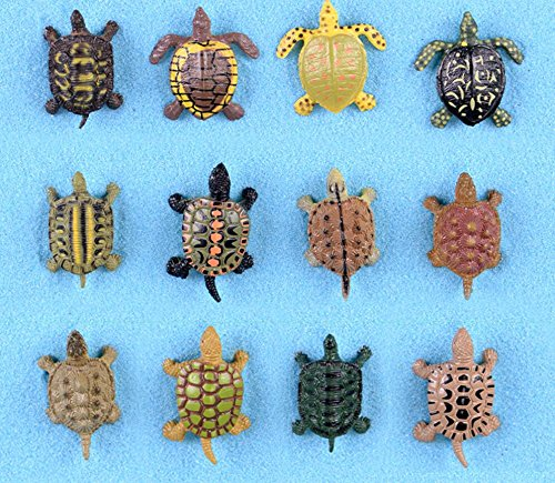 Unbekannt Home Decor 12 Stücke Roman Fee Garten Simulation Schildkröte Ornamente für Bonsai Ocean Landschaft Decor