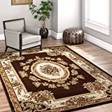 Sultan de Sarouk Noir persan Floral Oriental Formel traditionnel Zone Tapis facile à nettoyer sans tache/abri de jardin résistant à la décoloration moderne contemporain de transition épais doux en peluche Salon salle à manger Tapis, Synthétique, marron, 3'11'' x 5'3''