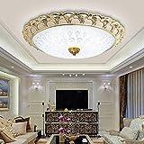 Lilamins Continental uns Deckenleuchten Led kreisförmige Lounge Licht modernen minimalistischen Balkon Licht Gang Deckenbeleuchtung für Wohnzimmer, Schlafzimmer, Bad, Flur, Esszimmer, 50 cm Leuchtkörper (Gold-Weißlicht-LED