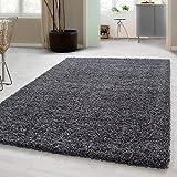 Carpetsale24 Wohnzimmer Teppich Hochflor Shaggy einfarbige und kuschelige Teppiche, Farbe:Grau, Maße:120x170 cm