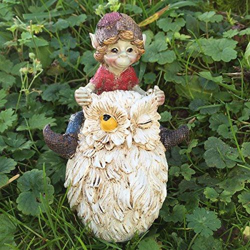 Pixie-Racing-Owl-Ornament-Green-Garden-Home-Decor-Fun-Quirky-Gift-Figurine-Anthony-Fisher