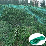10M x 4M Jardin filet Vert Protection Anti-Oiseaux Net Maille Jardin Usine Protéger Plantes et Arbres Fruitiers de Rongeurs Oiseaux Cerf Meilleur pour les semis, Légumes, Fleurs, Fruits, Buissons, Clôtures Réutilisables (4)
