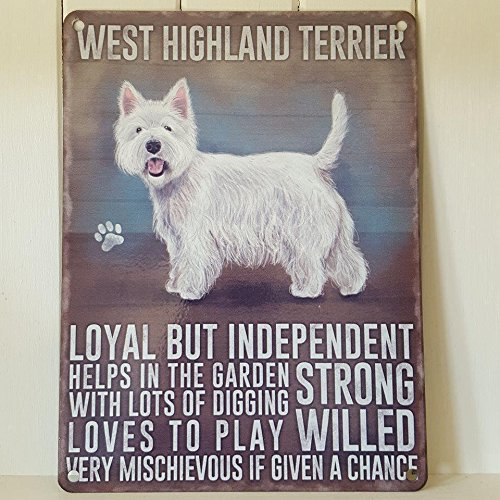Occidente Highland Terrier Westie Cane 15 x 20cm segno del metallo placca - LOYAL MA INDIPENDENTI