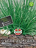 Sperli-Samen Schnitt-Knoblauch Knolau