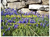 He Dwells Among Us: Guided Meditations on Lenten Gospel Encounters With Jesus Christ by Colleen M. Arnold MD