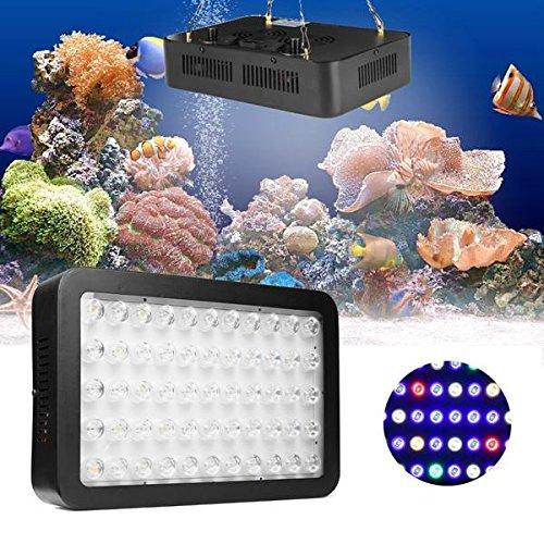 Bazaar 165W 55 LED Dimmbare Full Spectrum Aquarium Licht Lampe für Riff Fische Coral Tank
