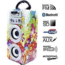 Altavoz Portátil Karaoke con Bluetooth USB SD Micrófono Radio (E025-1)