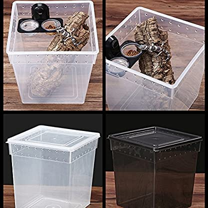 Double Grid Reptiles Food Water Feeding Bowl Insects Spider Breeding Tank Pots Suction Cup Gecko Feeder with 2 Bowls for… 5