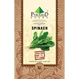 Pyramid Seeds Palak or Spinach Seeds (16 g) -1700 Seeds