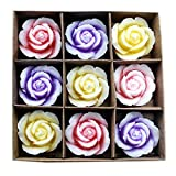 #9: Allin Exporters 9 Floating Rose Candle Set