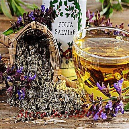 cancella: saldi!100 semi di fiori colorati salvia.bello e facile da coltivare.spedizione gratuita