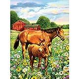 Royal Brush Verschiedenen Junior Kleine Malen nach Zahlen Kit 8.75-inch X 11.75-inch, Pferd in Field
