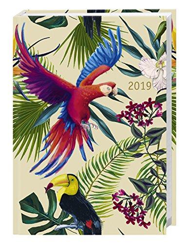 Tropical Birds Kalenderbuch A6 - Kalender 2019 - Heye-Verlag - Victoria Francés - Taschenkalender mit Schulferien - 11,6 cm x 16,3 cm