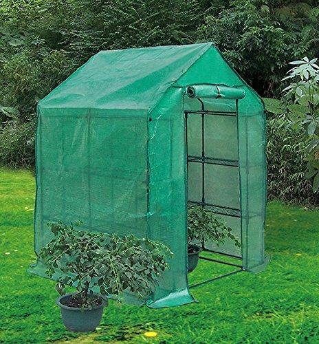 Biotop B2077Gewächshaus Tomate, Pe robust, 143x 143x 195cm