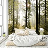 livingdecoration Fototapete Wald 274,5 x 254 cm Bäume Sonne Tapete inklusiv Kleister