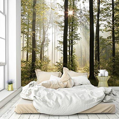 murimage Papel Pintado Bosque 274 x 254 cm Fotomurales Madera árboles luz del Sol Incluyendo...