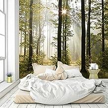 Papel Pintado Bosque 274 x 254 cm Fotomurales madera árboles luz del sol Incluyendo Pegamento livingdecoration