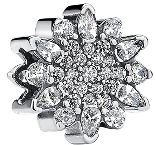 SaySure - 925 Sterling Silver Ice Crystal Charm Bead With Clear CZ