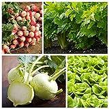 Ortaggi per consociazioni - Set no. 5 - semi di 4 specie vegetali