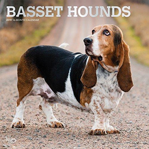Basset Hounds - Bassets 2019 - 18-Monatskalender: Original BrownTrout-Kalender, mit freier DogDays-App por Inc Browntrout Publishers