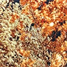 In the Fall [12