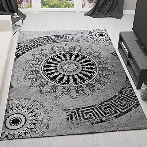 Klassischer Wohnzimmer Teppich Sehr dicht Gewebt, Meliert Medallion Ornament Muster in Grau Schwarz - Top Qualität, VIMODA, Maße:40 cm x 60