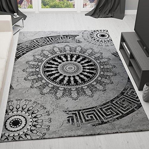 Klassischer Wohnzimmer Teppich Sehr dicht Gewebt, Meliert Medallion Ornament Muster in Grau Schwarz - Top Qualität, VIMODA, Maße:40 cm x 60 cm