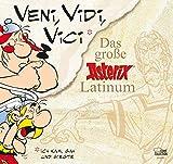 Veni, vidi, vici: Das große Asterix Latinum - René Goscinny, Albert Uderzo