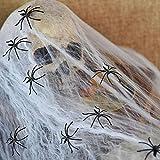 TK Gruppe Timo Klingler Halloween Spinnennetz Spinnenweben Netz mit 3X Spinnen Spinnen ALS Grußel Deko Dekoration Tischdekoration