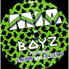 Boyz (Feat Akon+R.City) [Vinyl Maxi-Single]