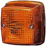 HELLA 2BA 003 014-111 Blinkleuchte, links / rechts